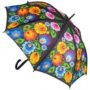 Parapluies folklores